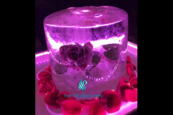 flower-in-ice-261DF3C89-2D3C-041E-80CA-5246D52E062F.jpg