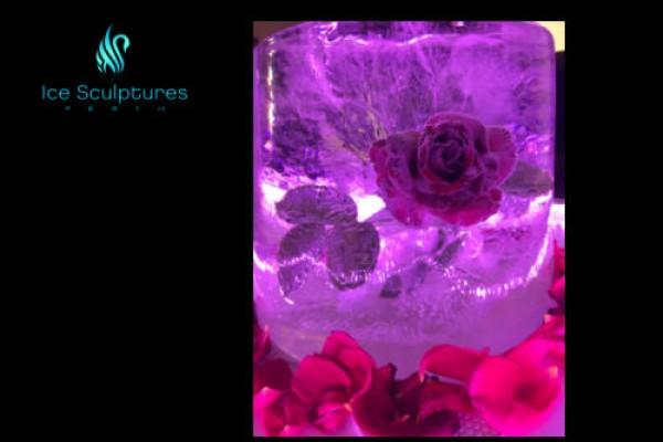 flower-in-ice-32B80BEDD-5551-3DD6-A978-EAD909558AD8.jpg