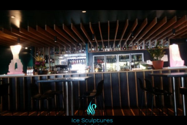 martini-luge-5AFEC38A0-0EC5-D13A-D940-82109A3A8257.jpg