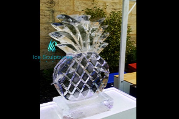 pineapple-luge-23CF21667-0058-685A-ECFE-44B568FA6A51.jpg
